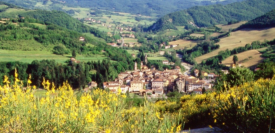 Val Borbera panorama