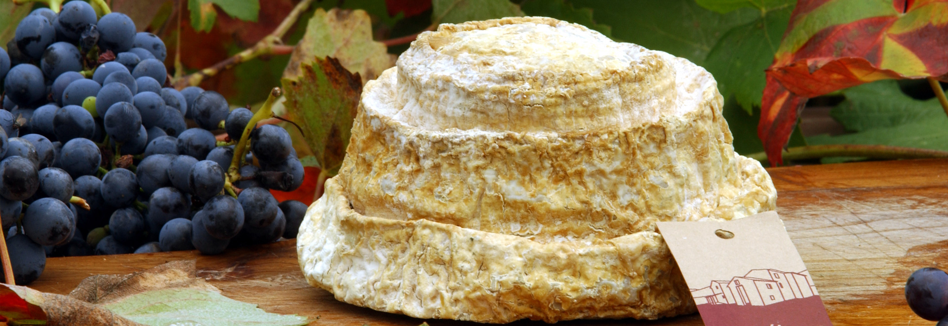 Montebore cheese